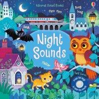 Night Sounds 夜晚发声书 英文原版 聆听夜晚的各种声音 低幼启蒙