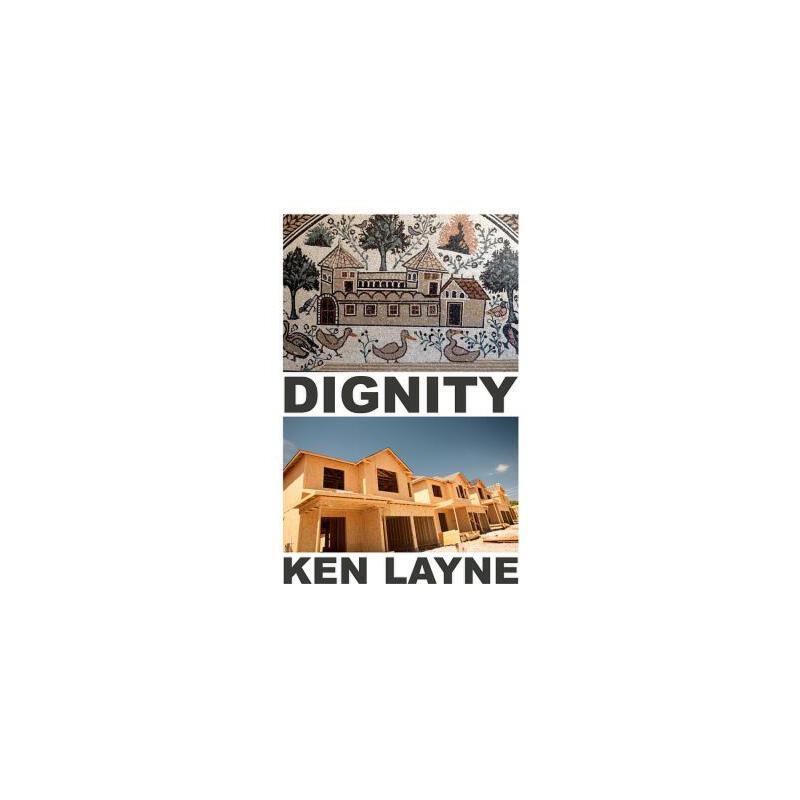 【预订】Dignity 9780983559825 美国库房发货,通常付款后3-5周到货!