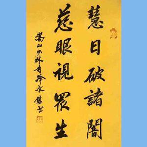 第九十十一十二届全国人大代表,少林寺方丈释永信(慧日破诸暗)
