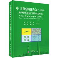 中国能源报告2018:能源密集型部门绿色转型研究