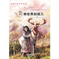 动物小说名家系列--美丽世界的孤儿