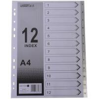 远生US-012A 11孔12页塑料索引纸 A4隔页纸12页分类卡 分类纸