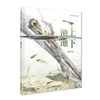 新版:池上池下(荣获第一届丰子恺优秀儿童图画书奖)
