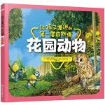 让孩子着迷的第一堂自然课――花园动物