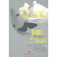 【旧书二手九成新】阴影,属于你的生命礼物 (美)福特 著,马晓棠 译 9787508621258 中信出版社