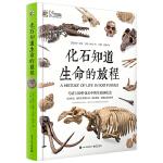 化石知道生命的旅程(精装版)(全彩)