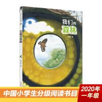 """新版:我们的森林(给孩子的一本""""自然美学""""笔记,手边最靠谱的昆虫图鉴)"""