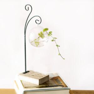 美庭 水培花器现代小球玻璃花瓶 透明苔藓瓶水培花插