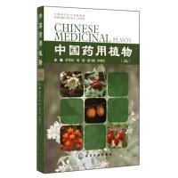 中国药用植物(2)