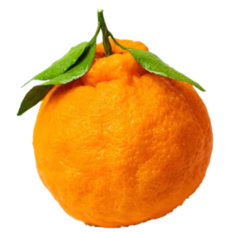 【包邮】乐食汇 南非进口红心西柚4只装 单果250-300g新鲜葡萄柚 进口水果