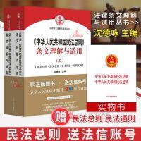 包邮正版 2017年中华人民共和国民法总则条文理解与适用(上下册)司法解释 沈德咏主编