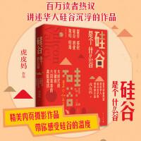 硅谷是个什么谷 虎皮妈著讲述华人硅谷沉浮的作品留学移民硅谷创业海归归海大时代的关键词中国当代小说