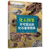 化石图鉴:不可思议的化石鉴赏图典