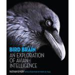 【预订】Bird Brain: An Exploration of Avian Intelligence