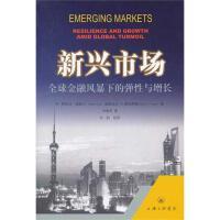 新兴市场:全球金融风暴下的弹性与增长 M.阿伊汉・高斯