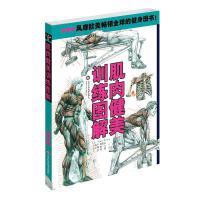 肌肉健美训练图解(*版) 山东科学技术出版社