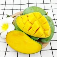 【包�]】海南正宗金煌芒果一�果8斤�b 新�r水果 �墓�包�r