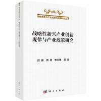 【按需印刷】-战略性新兴产业创新规律与产业政策研究
