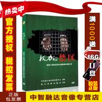 权力的禁区 领导干部违纪违法腐败案件警示录廉政教育片1DVD反腐倡廉光盘影碟片