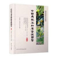 中国乌龙茶种质资源图鉴