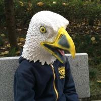 老鹰动物头套面具乳胶搞笑大雕成人儿童抖音恐怖动物面具头套可爱