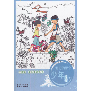 王勇英成长小说系列:北方的那个少年