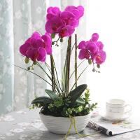 蝴蝶兰仿真花欧式家居客厅装饰花玄关餐桌盆景摆件