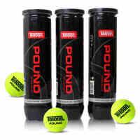 满百包邮 正品天龙Teloon网球 Pound P4比赛训练网球4只装铁罐网球