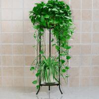欧式铁艺多层花架子实木落地客厅阳台室内绿萝吊兰花架花盆架
