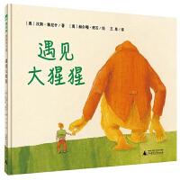 魔法象图画书王国第四辑 遇见大猩猩 汉斯・雅尼什著 意大利博洛尼亚国际童书展*童书奖3-6岁幼儿童亲子共读绘本想象力图