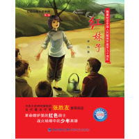 红妹子(红色少年小说系列)