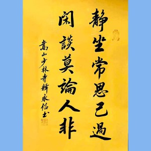 第九十十一十二届全国人大代表,少林寺方丈释永信(静坐常思己过)
