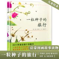精装正版一粒种子的旅行颗小学生少幼儿童抱抱课外情商亲子情商绘本故事图书0-3-6-8-10岁