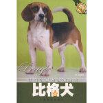 【新书店正版】比格犬林莉著中国林业出版社9787503841576