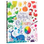 英文原版Usborne Big Book of Colours孩子的色彩启蒙全书 艺术启蒙