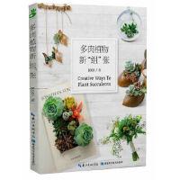 """多肉植物新""""组""""张JOJO湖北科学技术出版社9787535266026"""