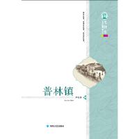 毛泽东文学院精品文丛:普林镇 尹亿民 9787546809830