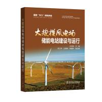 大规模风电场储能电站建设与运行