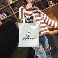 韩国帆布包女单肩手提森系小文艺学生书包环保购物袋简约百搭清新