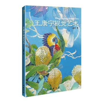 王康宁视觉艺术 9787514910810