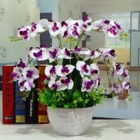 蝴蝶兰花艺盆栽仿真干花套装饰假花绢花客厅餐桌摆设摆放花卉