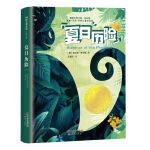 国际大奖小说・成长版――夏日历险