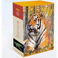 【2021年6月现货】兵器杂志2021年6月第6期 专题 二战盟军滑翔机 印度装备以色列机枪 没有飞起来的欧洲鹰 国产雷