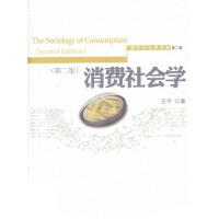 消费社会学(第二版)