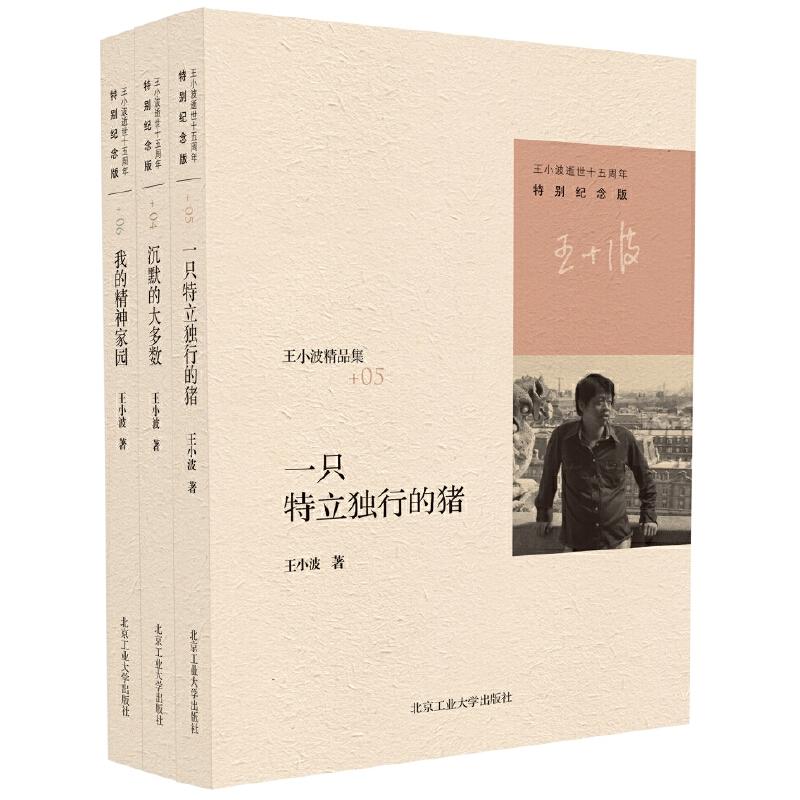 王小波杂文精选集(全三册)