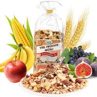 保罗森 德国进口麦片 水果麦片 500g*1袋 冲饮水果谷物早餐麦片 进口即食燕麦片保罗