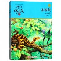 金蟒蛇(升级版)/动物小说大王沈石溪品藏书系