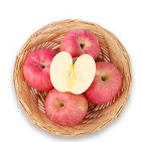 【陕西特产】洛川红富士苹果礼盒5kg 新鲜水果洛川红富士苹果* 24枚礼盒5kg