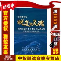 正版包票八大山人 中国绘画欣赏系列 杨琪 1DVD 视频音像光盘影碟片