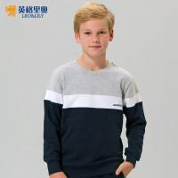 男童套头卫衣套装2017秋装新款中大童男孩运动儿童卫衣卫裤两件套